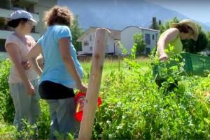 Film über die Gartenkooperative Sommer 2015