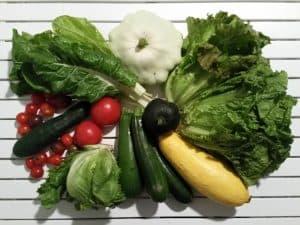 Gemüsetasche und Beipackzettel KW33