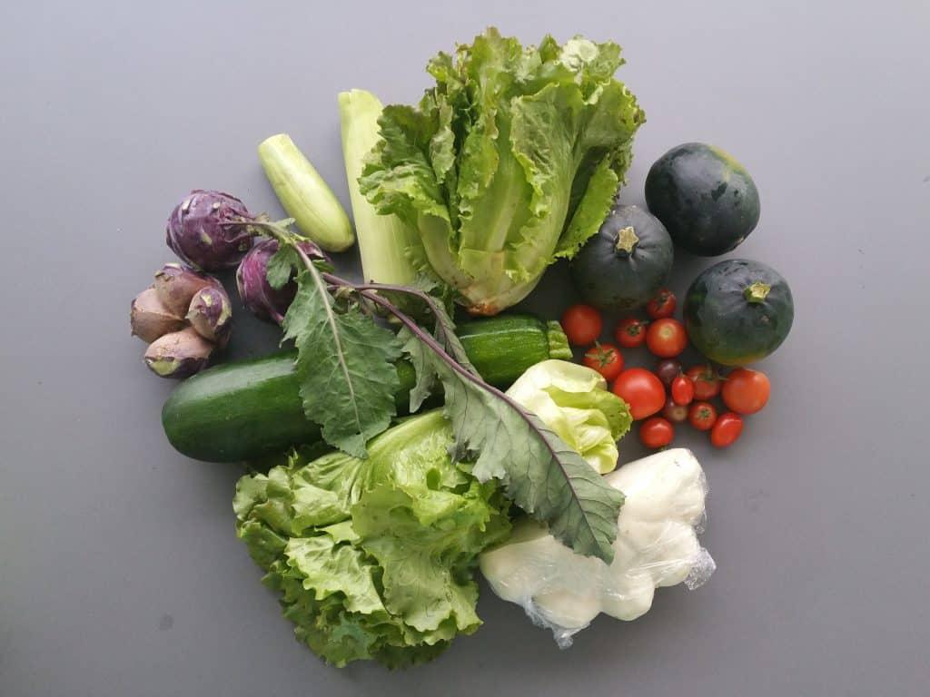 Vegane Ernährung – eine Herausforderung