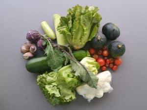 Gemüsetasche und Beipackzettel KW38