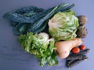 Gemüsetasche und Beipackzettel KW42