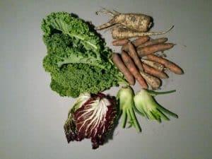 Gemüsetasche und Beipackzettel KW 44