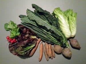 Gemüsetasche und Beipackzettel KW 51