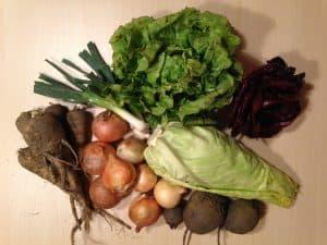 Gemüsetasche und Beipackzettel KW12