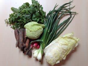 Gemüsetasche und Beipackzettel KW 20