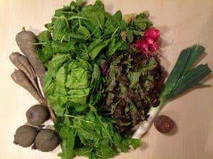 Gemüsetasche und Beipackzettel KW21