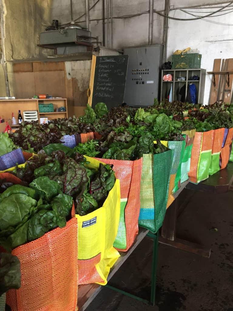 WICHTIG: Ab sofort wieder wöchentlich eine Gemüsetasche