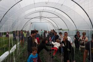 """Das Projekt """"Gemüsetunnel"""" lebt"""
